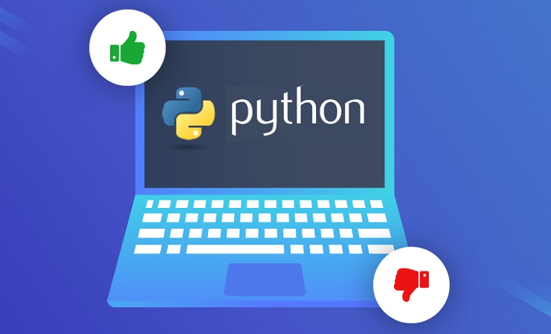 The Pros and Cons of Python | Laneways.Agency