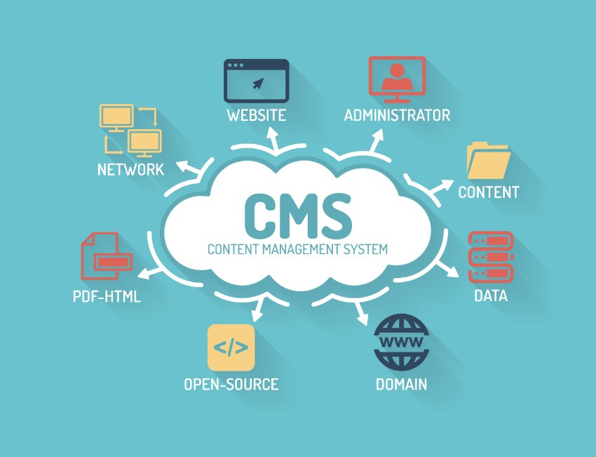 Content Management System Types of Custom Software | Laneways.Agency
